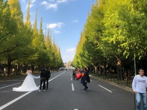 バイク東京5